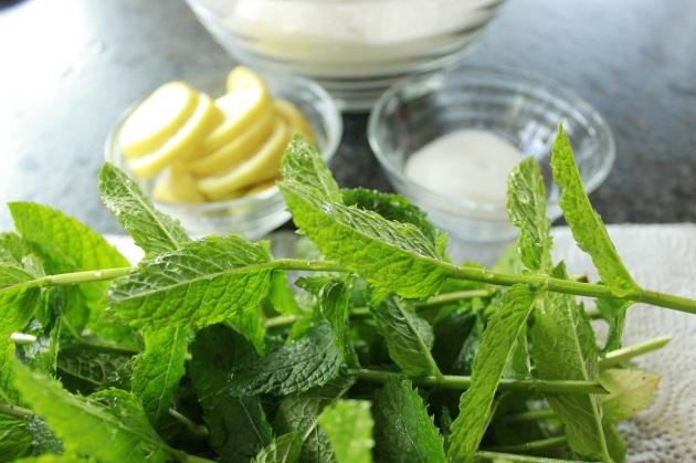 Zutaten für Minzesirup: Minze, Zitrone, Zucker, Zitronensäure, Wasser