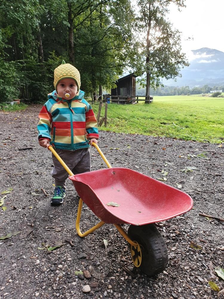 Kind mit Schubkarre im Waldkindergarten